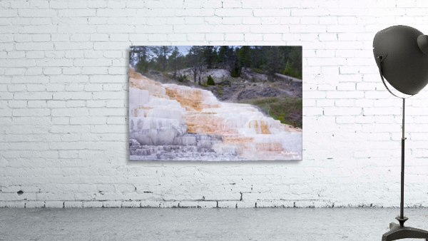 Yellowstone Lower Terrace
