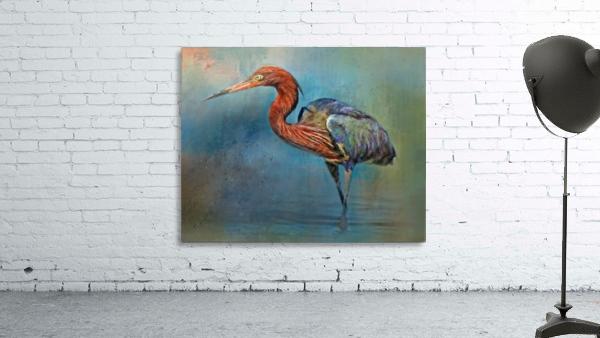 Painted Reddish Egret