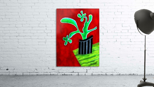 Cactus on Green Table
