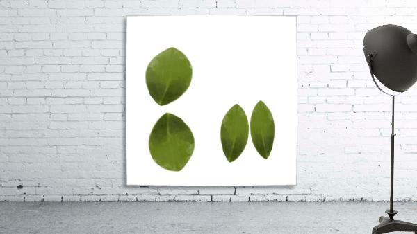 4 Leaves