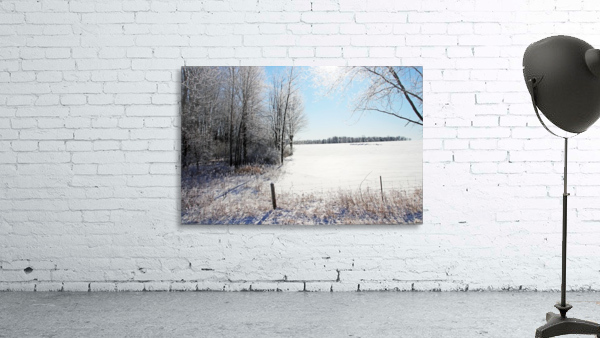 Frosty Winter Countryside I