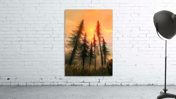 Pine Woods Sunset Fantasy