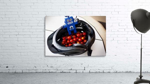 Robot Bike Helmet Tomatoes
