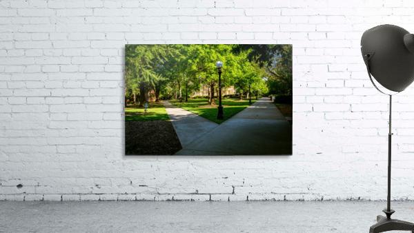 University of Georgia   Athens GA 06331