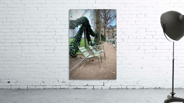 Chaises du Luxembourg   7