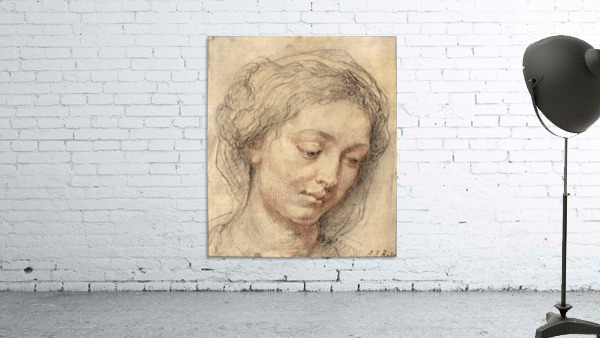Head of a woman -2- by Rubens