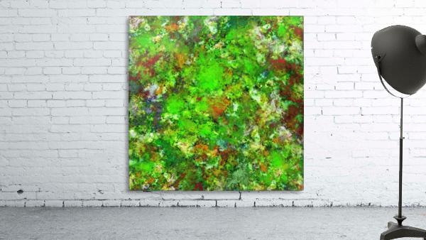 Slippery green rocks