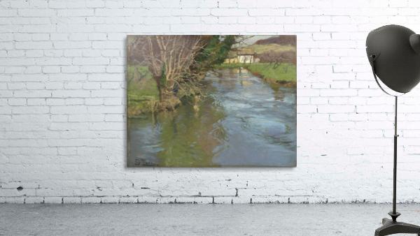 A stream in spring