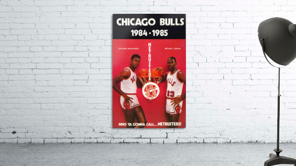 1984 chicago bulls michael jordan who ya gonna call netbusters poster