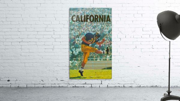 vintage california football art
