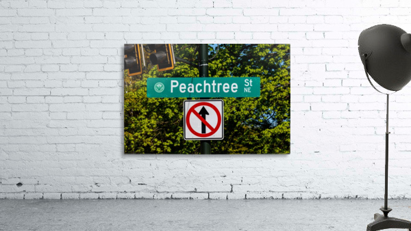 Peachtree St Road Sign   Atlanta GA 7162