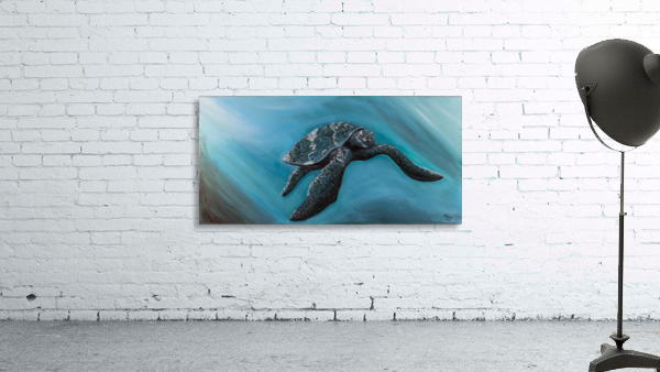 Collection WAVES-Turtle