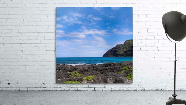 Hawaii Cliff and Coastline Square Panorama