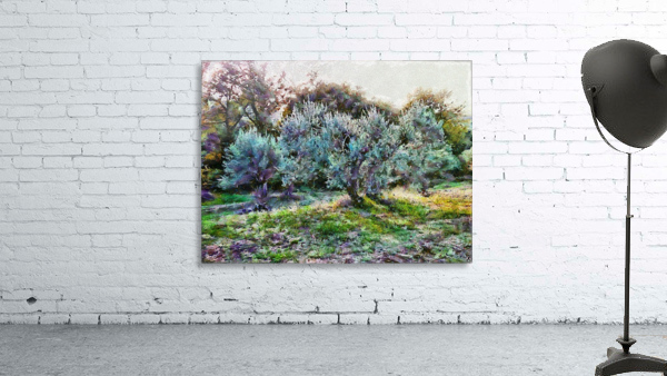 Colorful Olive Grove
