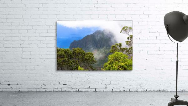 Wild Kauai 3
