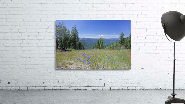 Sierra Nevada in Spring 7 of 8