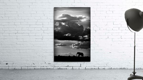 He walks under an African Sky by WildPhotoArt