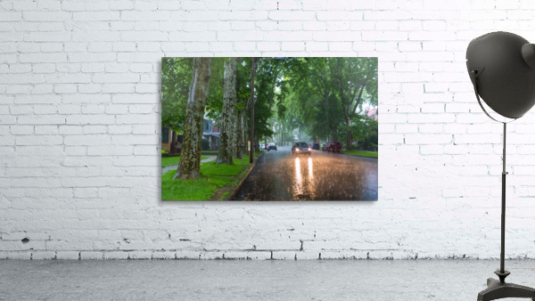 Summer Rain ap 2892