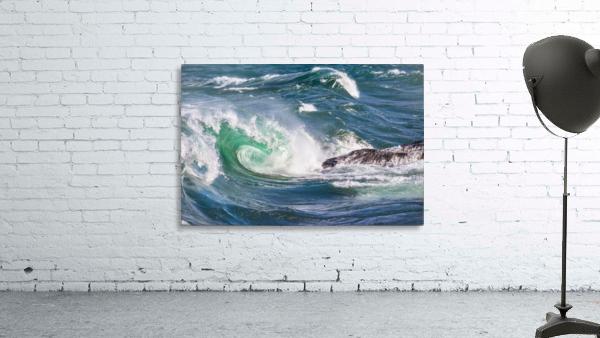 Wave Curl ap 2663