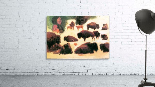 Study of Buffaloes by Bierstadt