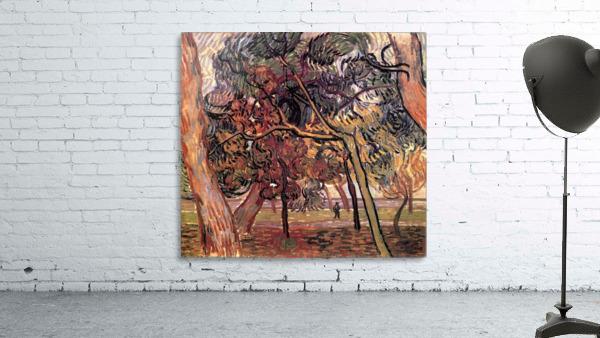 Study of Pine Trees by Van Gogh