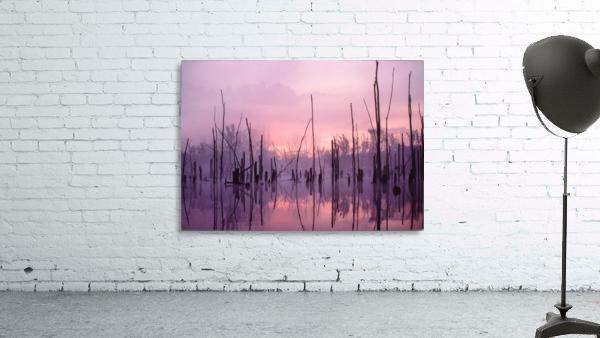Sunrise ap 1501