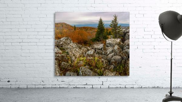 Bear Rocks Overlook apmi 1789
