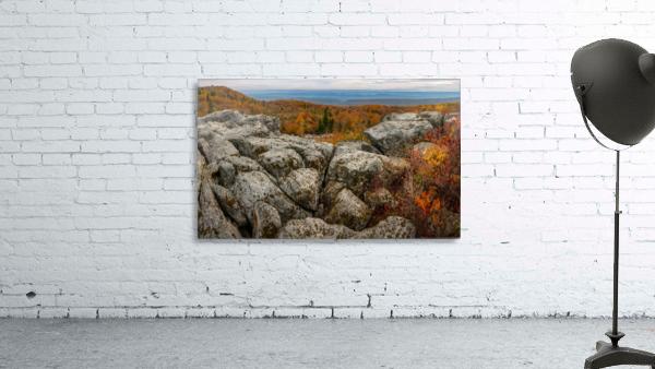 Bear Rocks Overlook apmi 1793