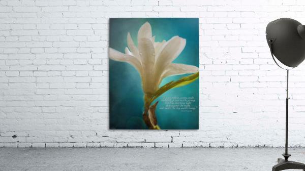 Like Morning Light - Flower Art by Jordan Blackstone