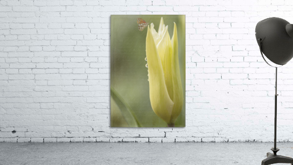 Spirit Of Love - Spring Art by Jordan Blackstone