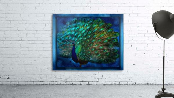 Being Yourself - Peacock Art by Jordan Blackstone