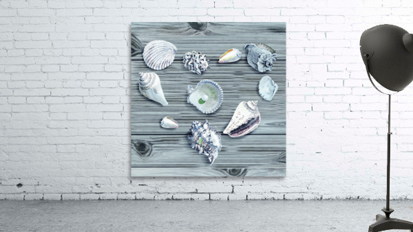 Silver Gray Seashells Heart On Ocean Shore Wooden Deck Beach House Art