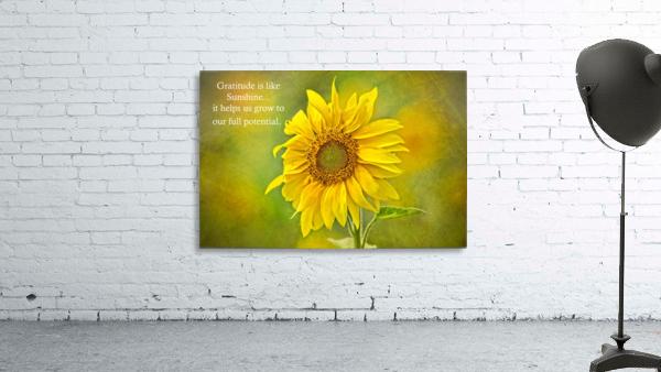 Gratitude is Like Sunshine Print