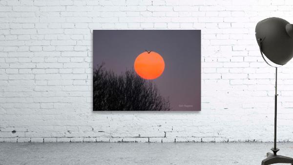 Sunrise lever de soleil