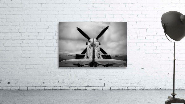 Spitfire Backside Limited Edition 50 Prints only