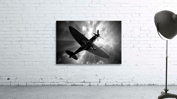 Spitfire Angel Limited Edition 50 Prints only