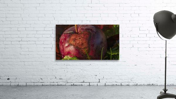 La pomme tatouee - The tattooed apple