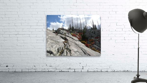 Easy Climb to Grouse Mountain