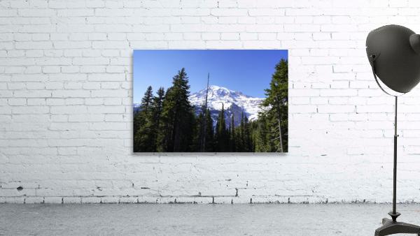 Mount Rainier Pacific Northwest Washington State
