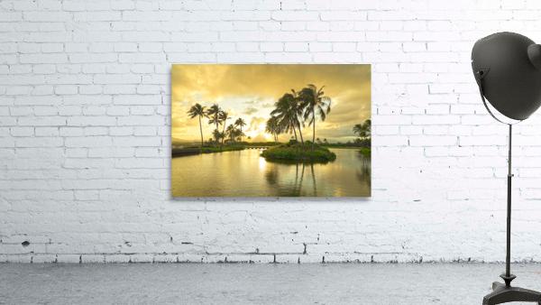 Shadows and Light as the Sun Sets in Kauai 2 of 2