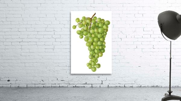 Green Grapes Wall Decor Vintage Botanical Poster Kitchen Art