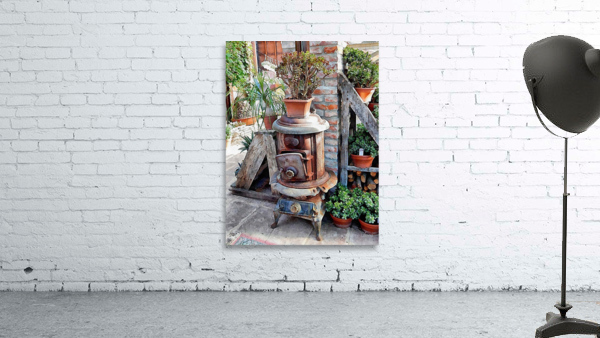 Old Wood Stove With Succulents