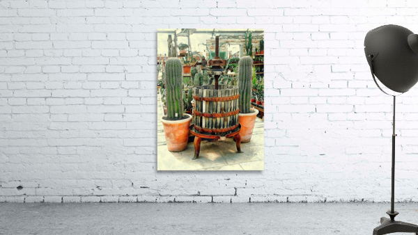 Old Wine Press Used in Succulent Display