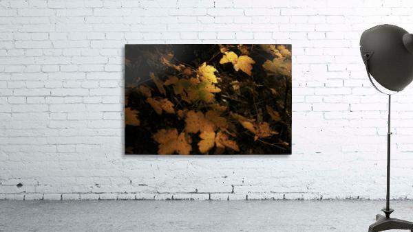 Remember autumn Print
