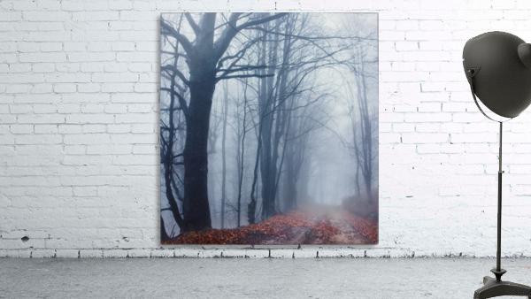 Autumn around us Print