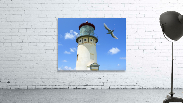 Kilauea Lighthouse and Wildlife Refuge on Kauai