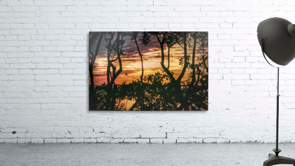 Sunset Collection - 03