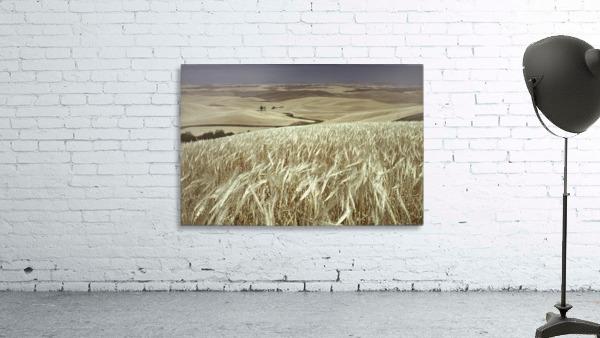 landscape_2_0600