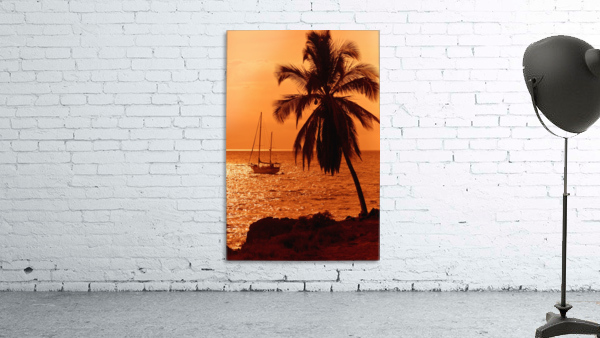Sailboat and palm tree at sunset; Kihei, Maui, Hawaii, United States of America
