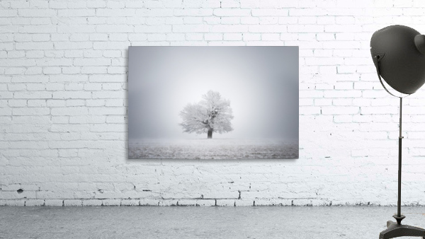 White solitude and light